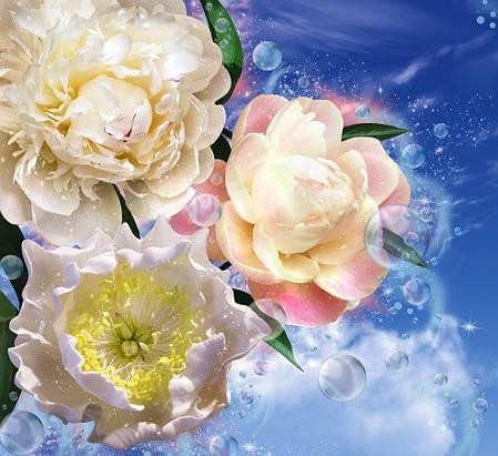 Фотообои, цвети,  Пионы,  12 листов, размер 210х196 см, фото 2