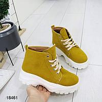 Женские ботинки демисезон, фото 1