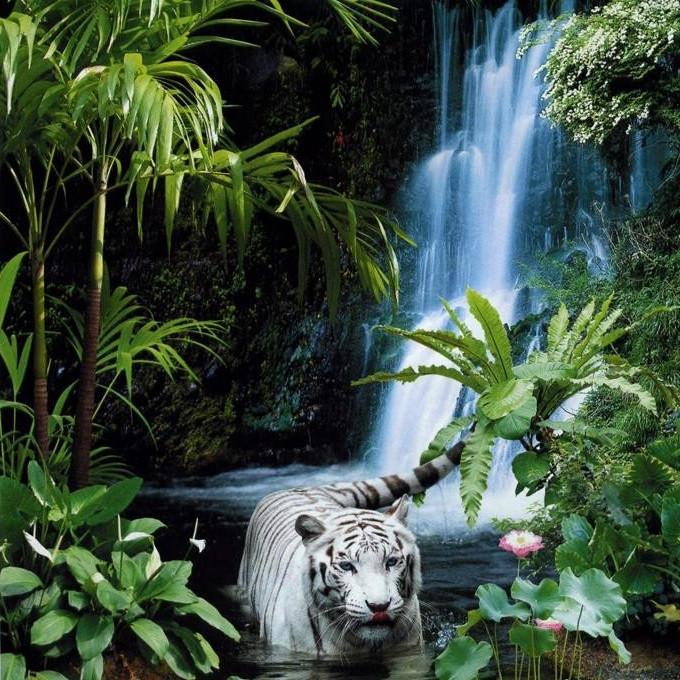 Фотообои,Тигр, водопад,  Тропическая сказка, 15 листов, размер 242х201см