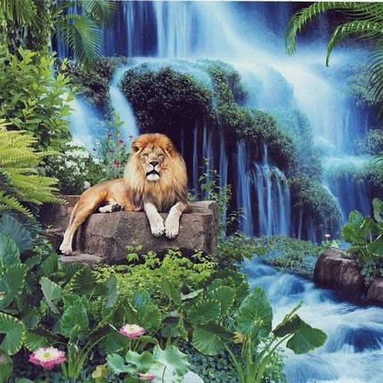 Фотообои, водопад,  Триумф величия, 15 листов, размер 201х242см, фото 2