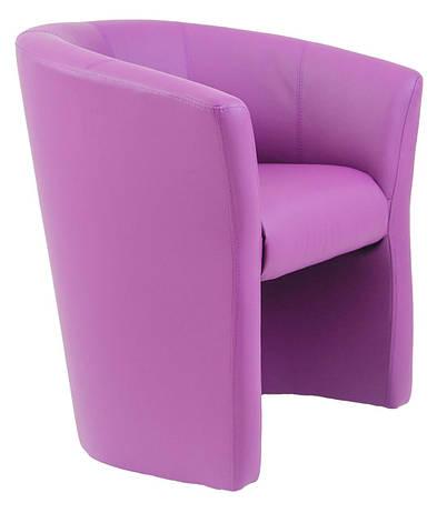 Кресло Бум (ассортимент цветов), фото 2