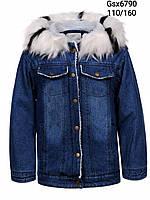 Джинсовая куртка на меху для девочек Glo-Story, 110-160 рр. Артикул: GSX6790 {есть:110,120,130}