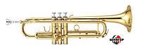 MAXTONE China TTC60L2 Труба помповое Сиb, золотой лак