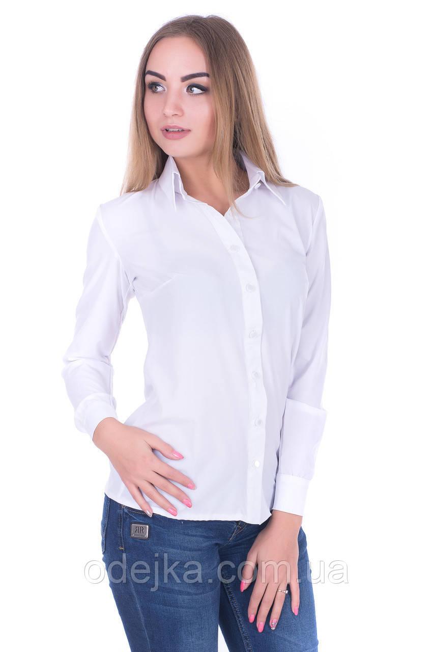 Блузка K&ML 458 білий 48