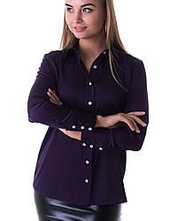Блузка K&ML 479 фиолетовый 46