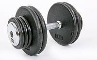 Гантель цельная профессиональная стальная RECORD (1шт) TA-7231-30 30кг (сталь, сталь хромированная, вес 30кг)