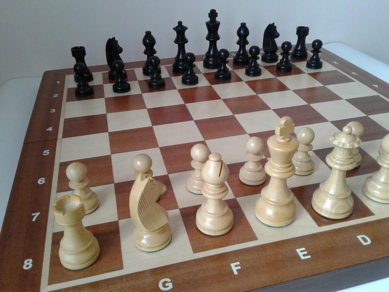 правильное название шахматных фигур с картинками всегда первого щелчка