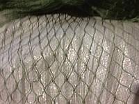 Сетка капроновая ячейка 22мм нитка 0,8мм