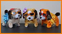 Игрушки собачки | Интерактивная собака
