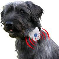 Антилай ультразвуковой водонепроницаемый ошейник Bark stop collar, фото 1