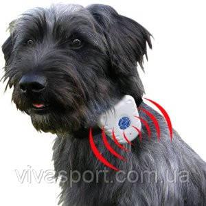 Антилай ультразвуковой водонепроницаемый ошейник Bark stop collar