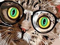 Картина по номерам 30×40 см. Кот в очках