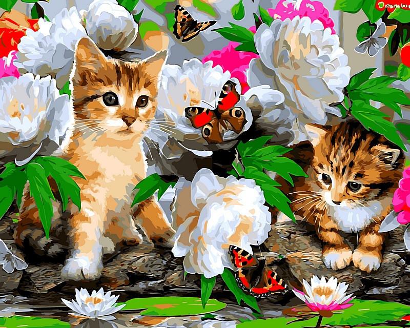 Картина по номерам 40×50 см. Милые котики