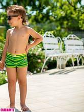 Детские плавки для мальчика Nirey Италия BX071410 Зеленый