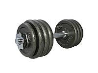 Гантель наборная железная LiveUp DUMBELL SET, 20 кг, LS2311-20