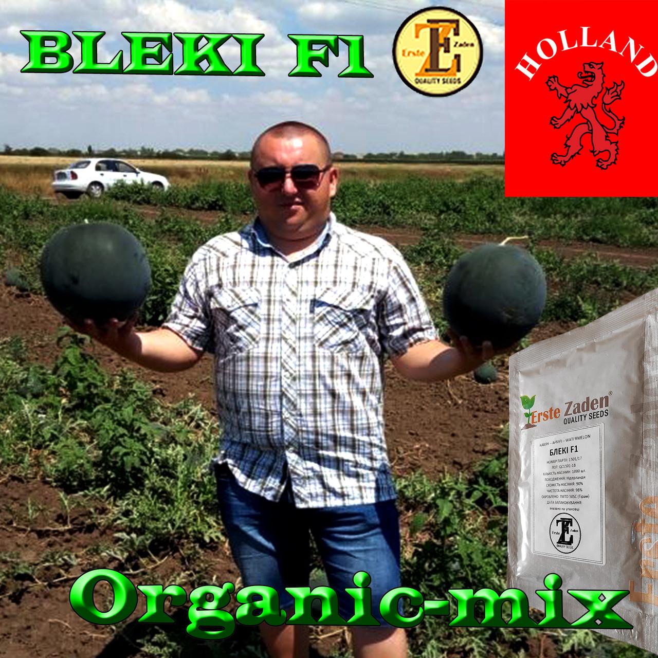 Семена, ранний, чорный арбуз БЛЕЙК F1 / BLEKI F1, ТМ Libra Seeds (Голландия), 1000 семян