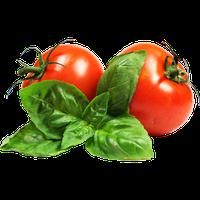Семена низкорослых (детерминантных) томатов