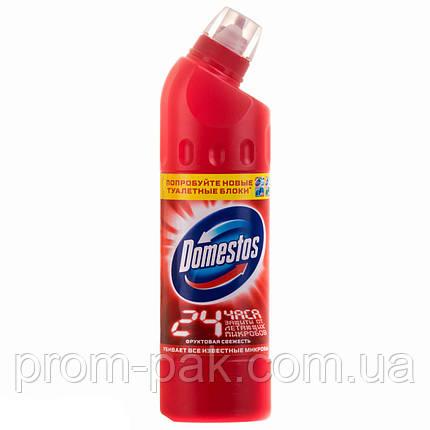 Моющее средство  для унитазов Domestos 500 мл фруктовая свежесть, фото 2