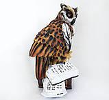 Статуэтка Сова на книгах большая 41 см СП205 цв фигурка филин, фото 2