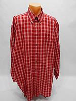 Мужская рубашка с длинным рукавом Pierre Cardin  011ДР р.54