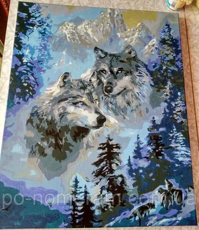 Картина по номерам Зимние волки отзывы и фото