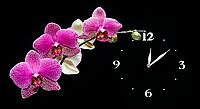 Настенные часы на холсте Декор Карпаты Орхидея C5 Черный (jeYE83146)