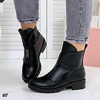 Женские высокие ботинки деми