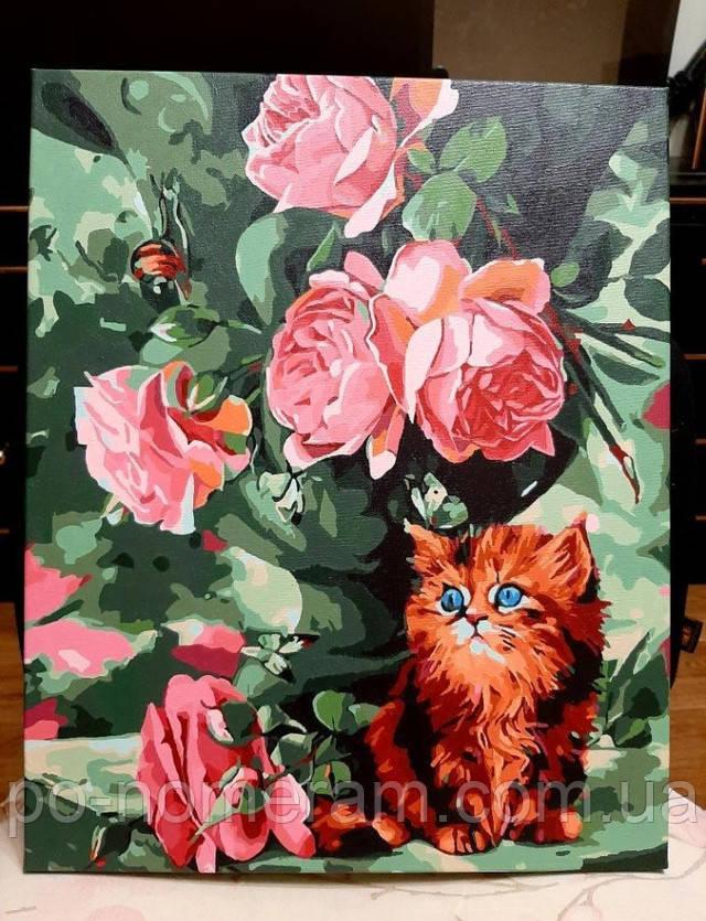 Картина по номерам Котенок и розы