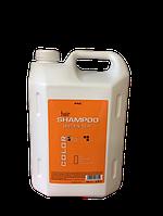 Шампунь для жирных волос Color Pro Shampoo Greasy 3500 ml