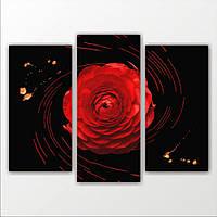 Составная модульная картина на стену 1 красная роза, 110х82 см