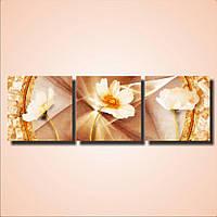 Составная модульная картина на стену Цветы космея, 156х50 см