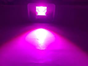 Светодиодный линзованный фитопрожектор  PREMIUM LEON SL-50FLens 50W (full spectrum led) Код.59640