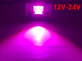 Светодиодный линзованный фитопрожектор  PREMIUM LEON SL-50FLens 50W 12-24VDC Код.59642