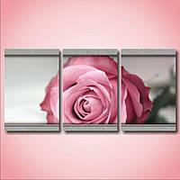 Красивая комнатная модульная картина для декора Одна розовая роза, 45х94 см