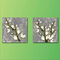 """Современная модульная картина на холсте в гостиную """"Дыхание весны"""", 100х50 см"""