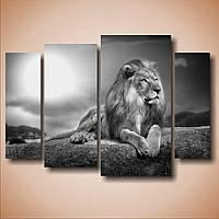 """Модульная картина Животные на стену в гостиную 4 в 1 """"Лев. Полиптих"""", 80х116 см"""