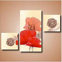Модульная картина на стену Маки триптих, 62х88 см