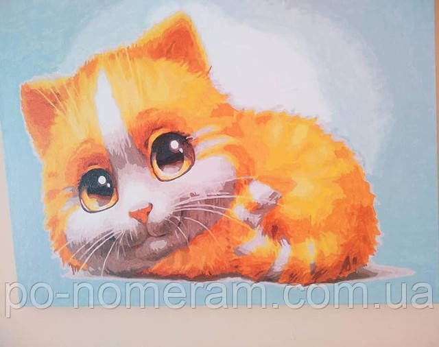 Картина по номерам Рыжий котик