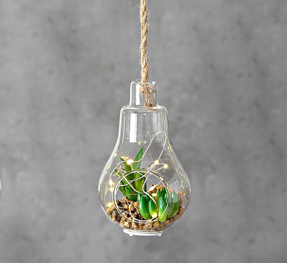 Светодиодная лампа с  LED установкой стекло h12см 1005915 лампочка с растениями
