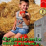 Семена, томат СВИТ МУССОН F1 / SWEET MYSSON F1 (крупный высокоурожайный) ТМ Erste Zaden, 250 семян, фото 2