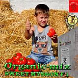 Семена, томат СВИТ МУССОН F1 / SWEET MYSSON F1 (крупный высокоурожайный) ТМ Erste Zaden, 250 семян, фото 3