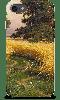 Чехлы для Телефонов SONY с индивидуальным принтом, фото 3