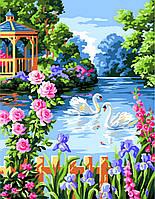 Картина по номерам Лебеди на пруду