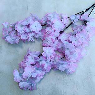 Сакура Декоративная бело-розовая., фото 2