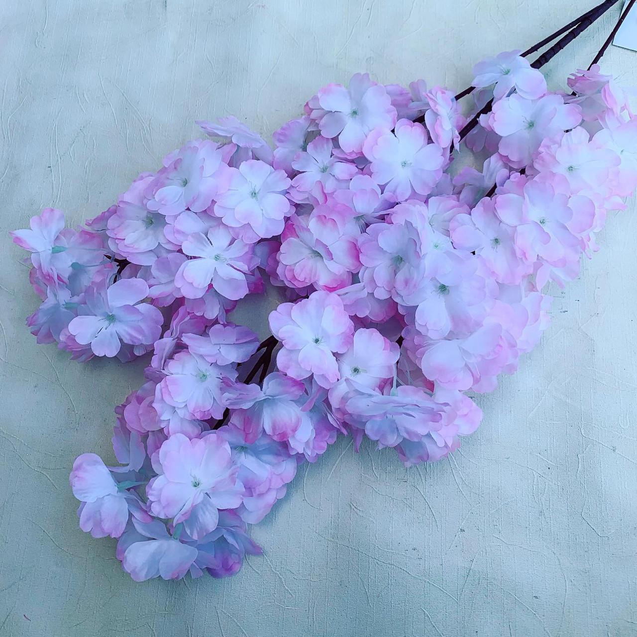 Сакура Декоративная бело-розовая.