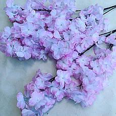 Сакура Декоративная бело-розовая., фото 3