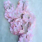 Сакура Декоративная (персиковая)