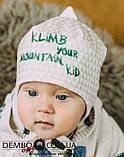 Детская шапка для мальчиков ХИЛЛ оптом размер 40-42-44, фото 3