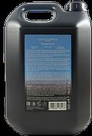 Шампунь для ежедневного использования Diapason DCM Frequent use shampoo, 5000 мл