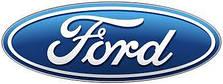 Зимові накладки на решітки для ford (форд)